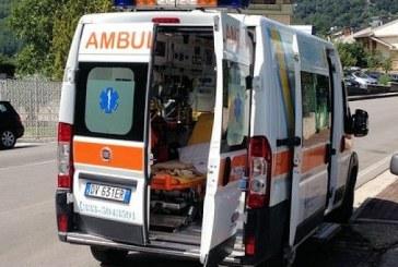 """Incidente a Crotone, una ISF travolta e uccisa: """"pensavo fosse un cane"""""""