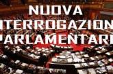 """Chiazzese (M5S): cosa intende fare il governo prer incrementare le vendite dei farmaci generici? Ministro Grillo: """"potenziare l'informazione per incrementarne l'uso"""" N.d.R."""