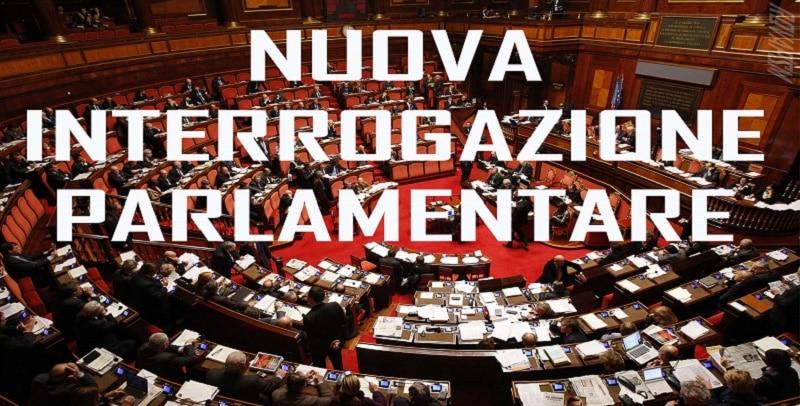Risultato immagini per interrogazione parlamentare