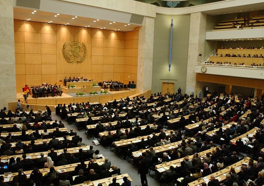 Assemblea mondiale OMS. L'Italia presenta la risoluzione sulla trasparenza sui farmaci