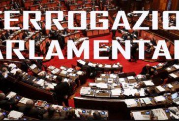 Interrogazione alla Camera dei Deputati sul caso dei licenziamenti Chiesi. Palesemente illegale. Cosa intende fare il Governo?