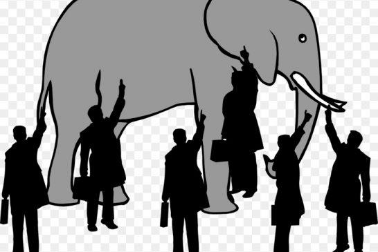 L'elefante nella stanza. La corruzione in sanità