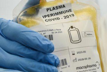 """L'uso del plasma di convalescenza nella Covid-19 è ostacolato da """"Big Pharma""""?"""